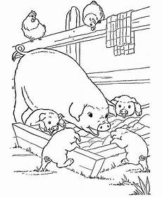 farm animals and their babies coloring pages 17434 pig and babies are on farm animal coloring page play color