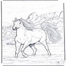 Ausmalbilder Pferde Im Wasser Ausmalbilder Pferde Ausmalbilder Tiere