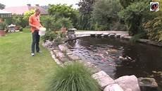 Le Bassin De Jardin De Jean Marc The Garden Pond Of Jean
