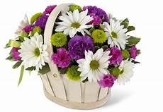 Fonds D Ecran 3744x2592 Bouquets Fleurs T 233 L 233 Charger Photo