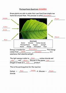 ks3 plants photosynthesis worksheets 13619 ks3 rate of photosynthesis by catbuckle teaching resources tes