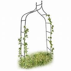 Vidaxl Tonnelle Arche Pour De Jardin Bois Plantes