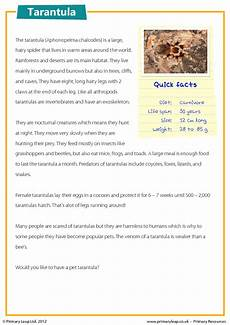 poetry comprehension worksheets ks2 25258 ks2 reading comprehension tarantulas reading comprehension teaching reading reading activities