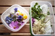 les fleurs comestibles pour une cuisine color 233 e et pleine