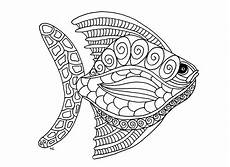 printable coloring pages for adults animals 17282 free coloring page coloring fish zentangle step 1 by olivier big fish zentangle style step 1