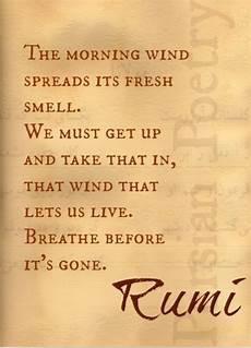 rumi poet rumi poetry rumi rumi quotes quotes
