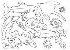 malvorlagen zum ausmalen ausmalbilder fische gratis 1