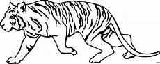 Malvorlagen Gratis Tiger Schleichender Tiger Ausmalbild Malvorlage Tiere