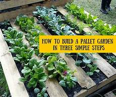 Pallet Gardens by How To Build A Pallet Garden In Three Simple Steps