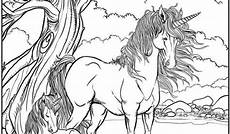 Unicorn Malvorlagen Free 16 Free Printable Unicorn Coloring Pages For Adults In