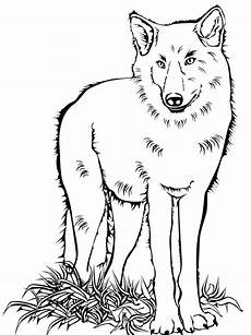 wolf coloring pages and print wolf coloring pages