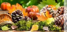 Herbstdeko Aus Naturmaterialien - herbstdeko aus naturmaterialien hallo frau das