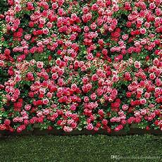 Flower Wall Floor Backdrop Photography Photo by 2019 Pink Flower Blossoms Wall Wedding Photo Backdrops