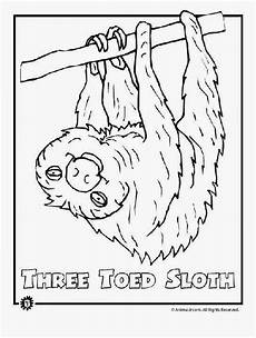 free coloring pages of animals in the rainforest 17397 rainforest animals coloring pages free endangered rainforest animals rainforest animals
