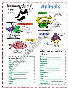describing animals esl worksheet by yenn