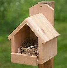cardinal bird house plans cardinal bird house bird houses cardinals and bird