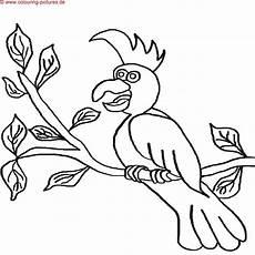 malvorlagen list ausmalbilder zum ausdrucken home decor decals