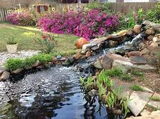 how to create a water garden garden org
