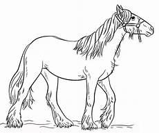 Ausmalbilder Pferde Haflinger Ausmalbilder Pferde Zum Ausdrucken Kostenlos F 252 R Kinder
