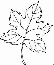 Gratis Malvorlagen Blatt Einzeln Blatt Ausmalbild Malvorlage Blumen