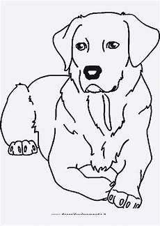 ausmalbilder kostenlos tiere hunde 68 ausmalbilder tiere kostenlos zum ausdrucken