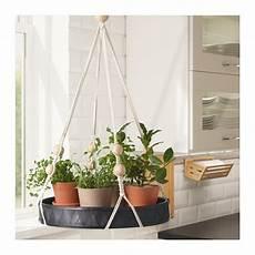 pflanzen günstig hej bei ikea 214 sterreich in 2019 makramee ikea
