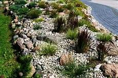 killing grass in rock ground cover thriftyfun