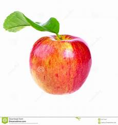 Malvorlage Apfel Mit Blatt Frischer Roter Apfel Mit Blatt Stockbild Bild Rund