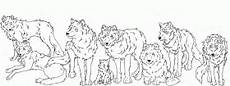 Malvorlagen Wolf Quest Wolf Coloring Pages Coloring Home