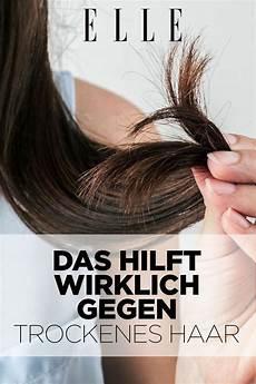 das hilft wirklich gegen trockene haare haare pflegen