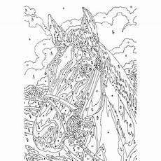 Malen Nach Zahlen Ausmalbilder Erwachsene Pferdekopf Malen Nach Zahlen Klein Mammut B3 Jpg 800 215 800