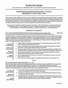 sales executive resume summary executive sales