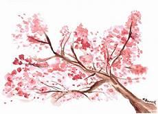 fleur de cerisier dessin aquarelle peinture fleur de cerisier japonais fleur