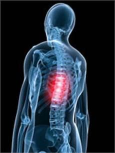 dolore alla gabbia toracica schiena ernia disco toracica osteopata it osteopata a roma