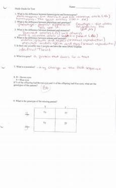 zork genetics worksheet answer key free printables worksheet
