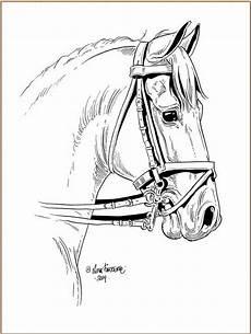 lena furberg horses dressage coloring pages