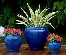 pots de fleurs id 233 es pour enjoliver votre espace ext 233 rieur