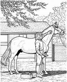 malvorlagen pferde springen tippsvorlage info