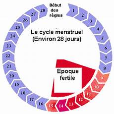 cycle menstruel calcul comprendre le cycle menstruel ovulation