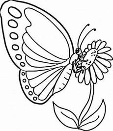 Gambar Bunga Kartun Hitam Putih Dan Kupu Kupu Kartun