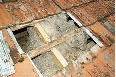 mittel gegen wespen im dach mittel gegen wespen im dach fabelhaft hornissen oder