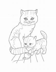 Katzenbabys Ausmalbilder Pet Coloring Pages To And Print For Free