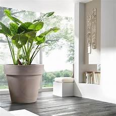 vasi da terrazzo in plastica vaso esterno grandi dimensioni standard one vendita