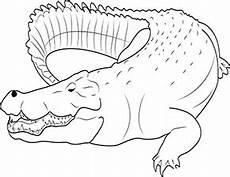 ausmalbild krokodil im zoo zum ausdrucken
