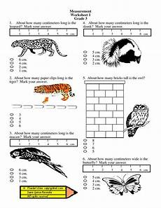 grade 2 math worksheets on measurement 1735 measurement worksheets grade 2 coloringkids co projects to try grade 2 12