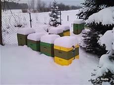 Wie 252 Berleben Bienen Den Winter