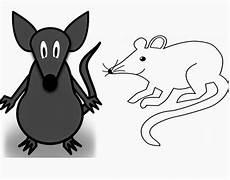 Terbaru 11 Gambar Tikus Kartun Hitam Putih Gani Gambar