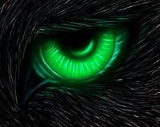 cool green wolf wallpaper neon wolf wallpaper 54 images