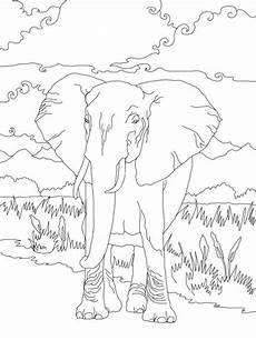 Ausmalbilder Afrikanischer Elefant Ausmalbild Afrikanischer Elefant Ausmalbilder Kostenlos