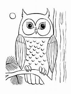 Gratis Malvorlagen Eulen Cool Owl Coloring Pages Coloring Home